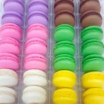 Standard Macaron 36 Pack